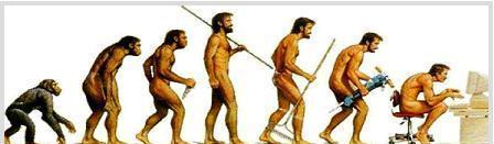 derékfájás és az evolució